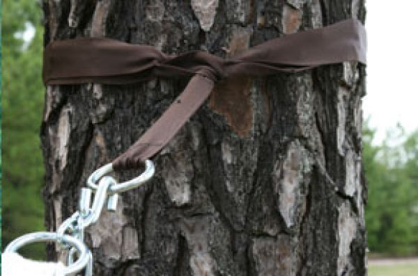 Hammock Accessories - Tree Straps
