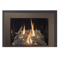 Sale 616 39k btu Green Smart Gas Fireplace Burn Unit